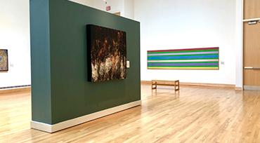 Cultivating Collections Installation View